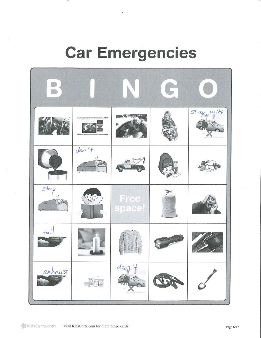 Car Emergencies BINGO.jpg