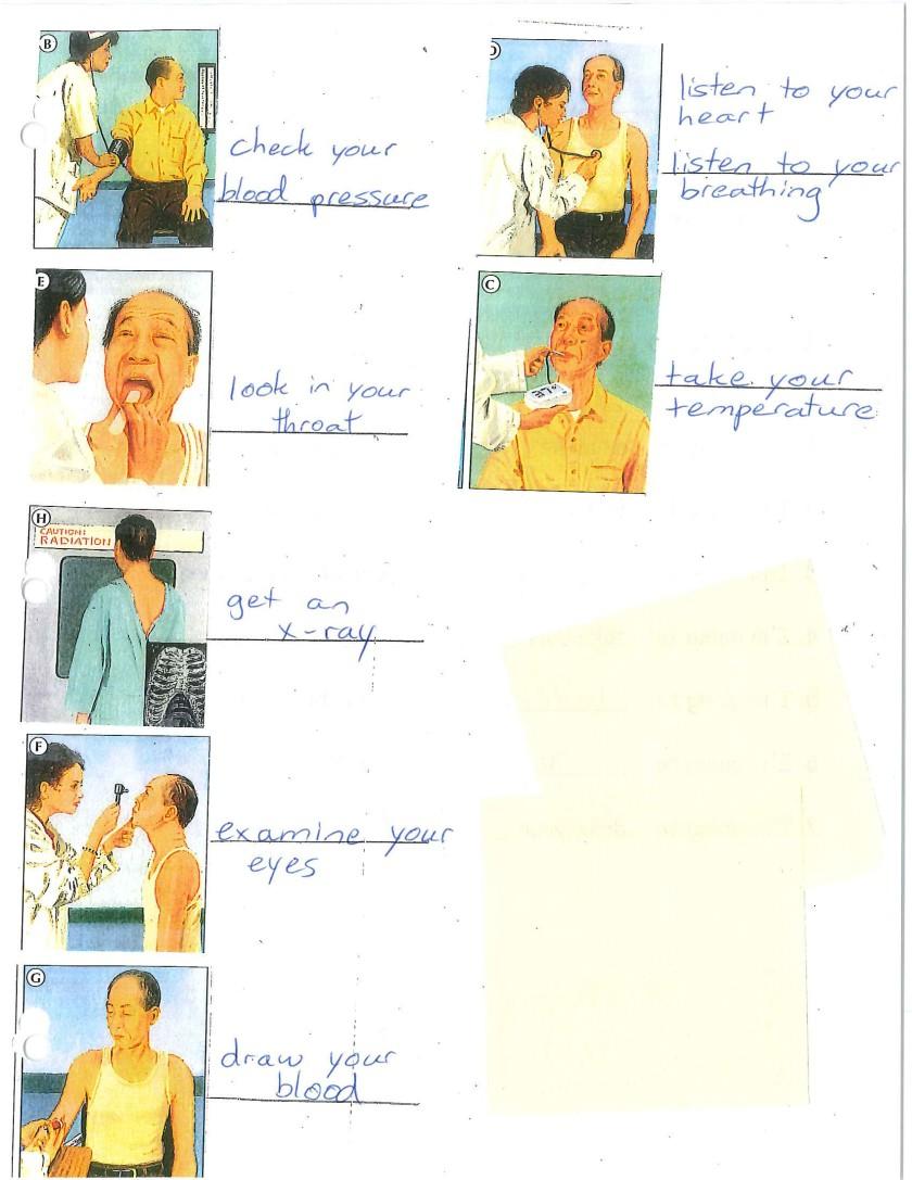 doctor examinations